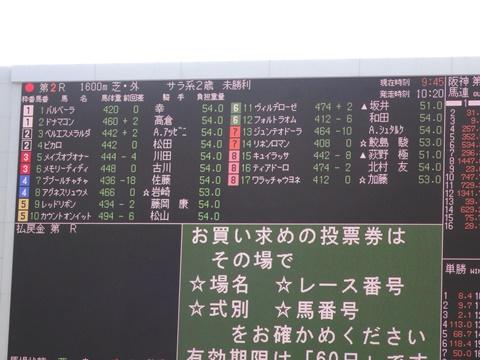 DSC05423_480.JPG