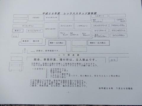 DSCN1400_480.JPG