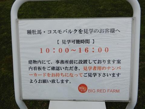 DSCN1534_480.JPG