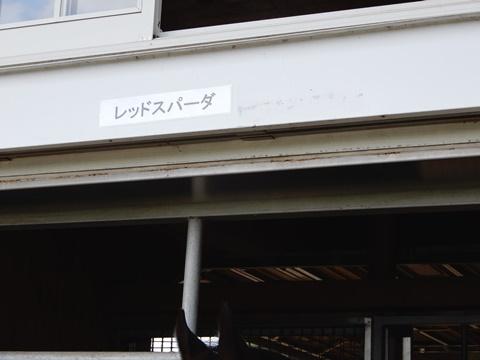 DSCN1655_480.JPG