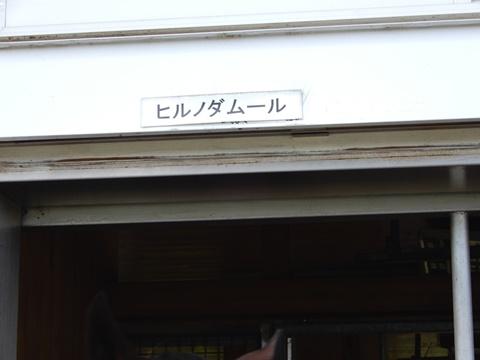 DSCN1624_480.JPG