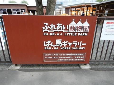 DSCN1825_480.JPG